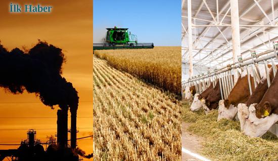 Hayvancılık, Tarım ve Enerji Sektöründeki Gerçekleri Ortaya Çıkaran Rapor!