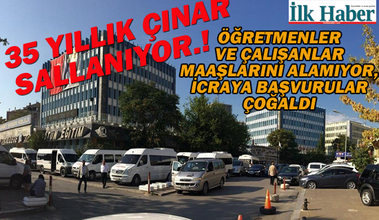 35 Yıllık Çınar Sallanıyor.!