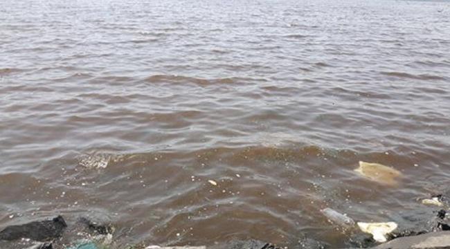 """İBB'nin Hedefi Küçükçekmece Gölünü """"Ölü Göl"""" Olmaktan Kurtarmak"""