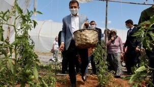 """İmamoğlu Hasat Bayramında Konuştu """"Gerçek Belediyecilik Mutluluğu Her Kesime Yaymaktır"""""""