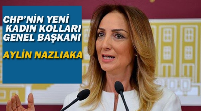 CHP'nin Yeni Kadın Kolları Genel Başkanı Aylin Nazlıaka