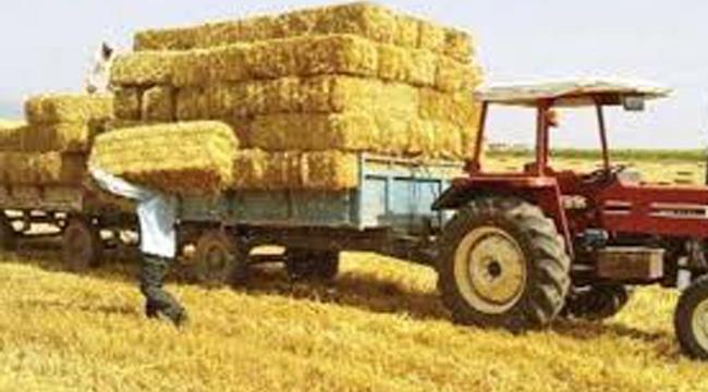 Saman'a Fahiş Zam, Et ve Sü Ürünlerini Artıracak