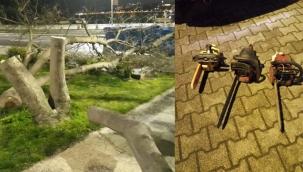 Üsküdar'da Gece Ağaçları Kesen Üç Kişi Yakalandı