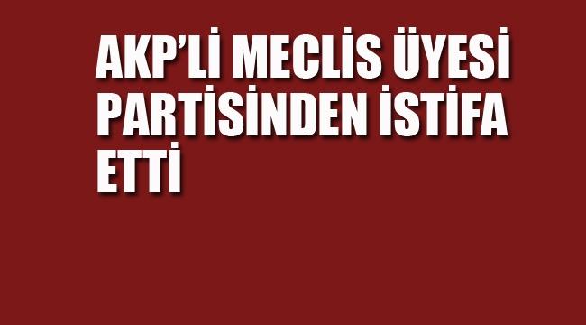 AKP'li Meclis Üyesi Partisinden İstifa etti