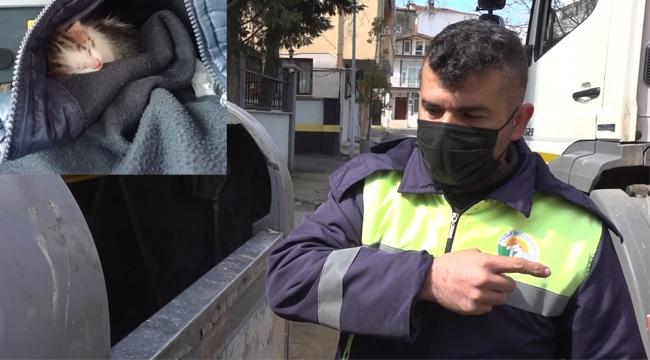 Çöp Konteynerine Atılan Kedileri Belediye Personeli Kurtardı