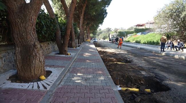 """Kartal Belediyesi'nden Yarım Asırlık Ağaçlara """"Nefes Borusu"""" Uygulaması"""