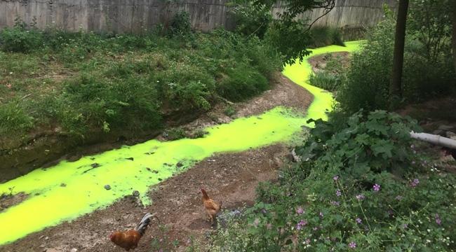 Tuzla'da, Kimyasal Atıklar Dere'ye Boşaltıldı!