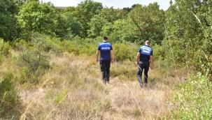 Tuzla Zabıtası Ormanlık Alanları Denetledi